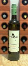 Sauvignon Blanc Gamlitz 2019 Weingut Pongratz Südsteiermark Österreich Weißwein